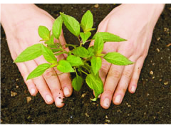 World Environment Day occurs on 5 June every year